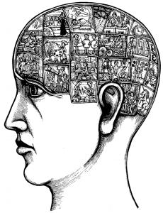 diagnose vanuit het sociaal systeem perspectief